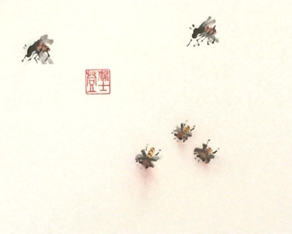 Bee Practice - 6.5x10-200.