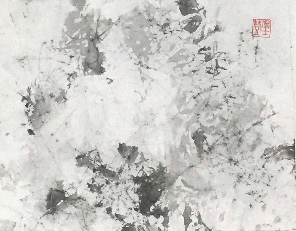 Detritus - 13x10 - 350.