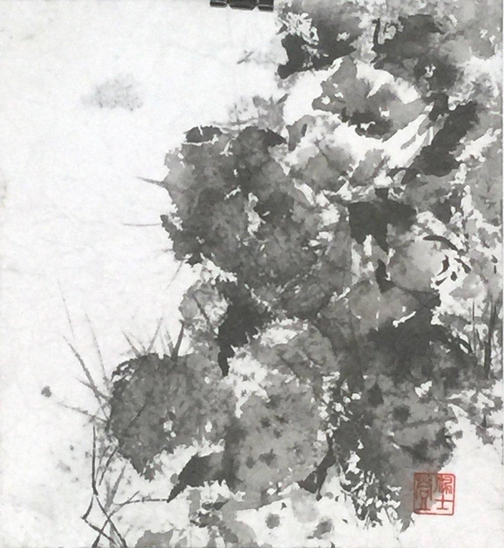 Yin Yang   10.5x10- 300.