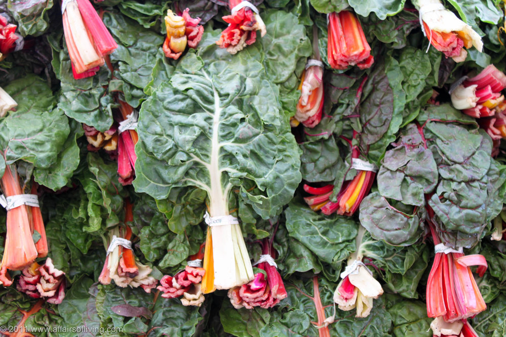 swiss chard high res.jpg