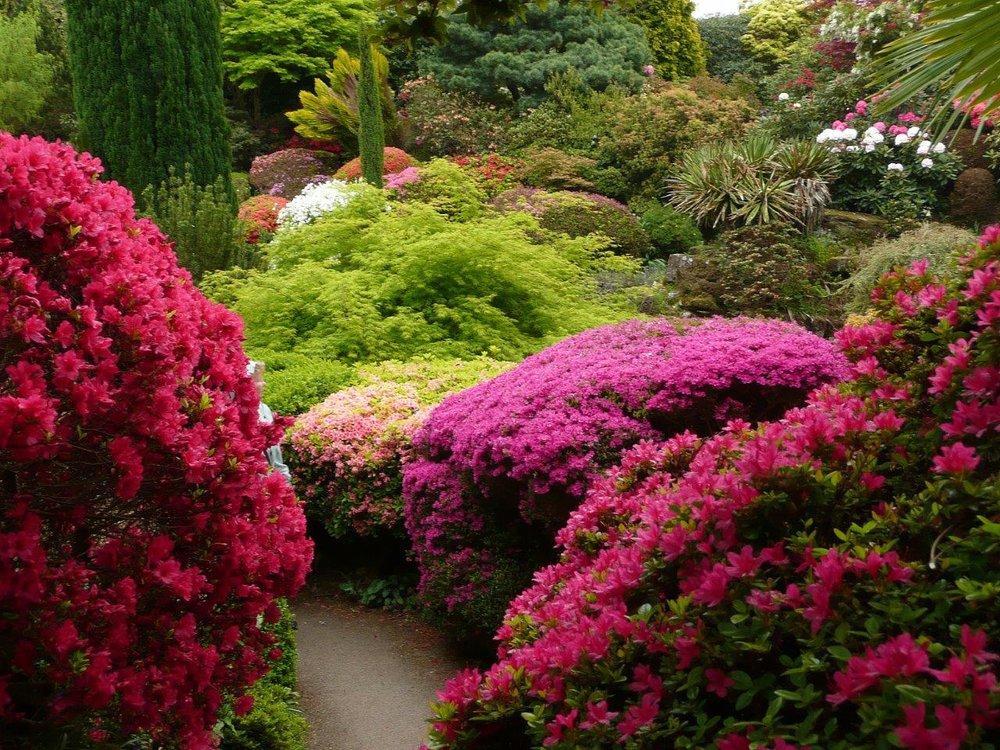 Finest gardens.jpg