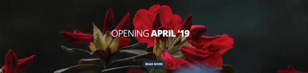 Leonardslee opening web banner.jpg