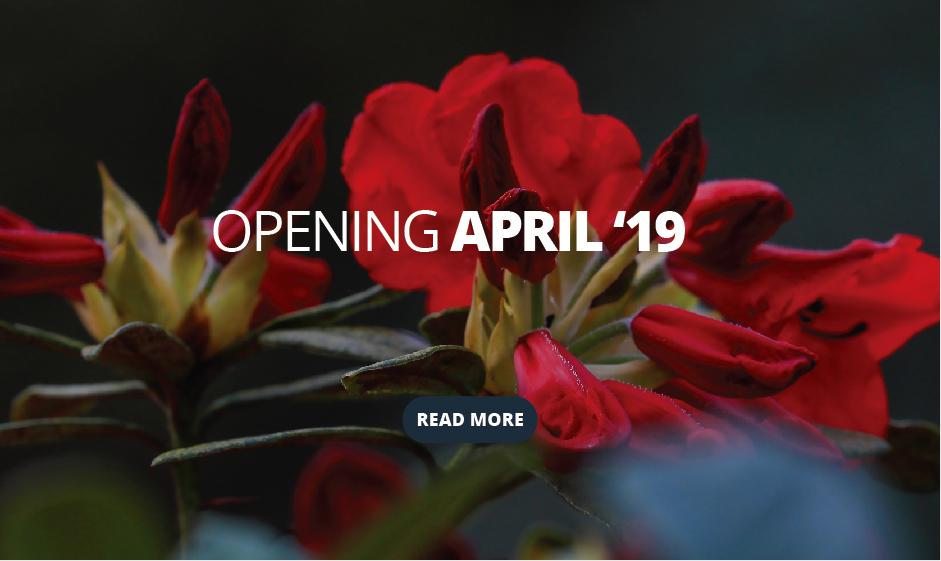 Leonardslee opening mobile banner.jpg