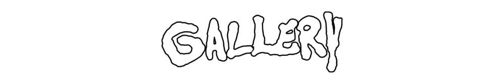 GALLERY BANNER.png