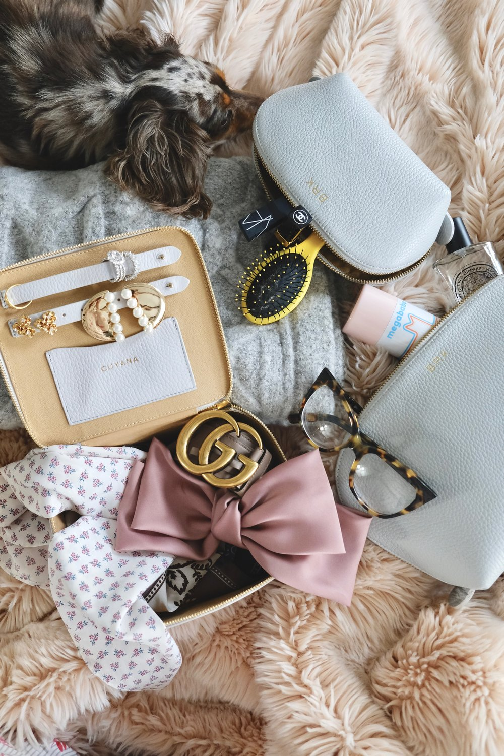 SHOP THIS PHOTO:    Cosmetic Bags   /   Jewelry Case   /   Bow   /   Pearl Earrings   /   Cluster Earrings   / Rings (my own) /   Belt   /   Glasses   /   Travel Brush   /   Scarf   / Silk Scarves (my own)