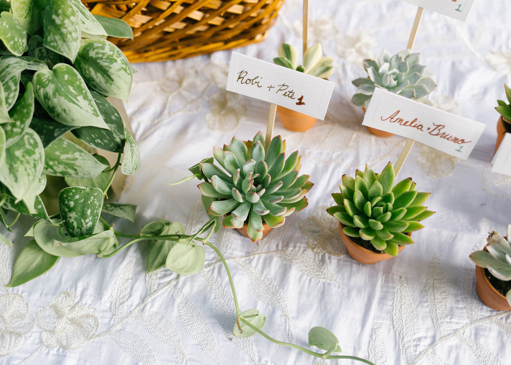 Living mementos for wedding guests by Robi, Pete, and family! Photo credit:  L'amour Foto .