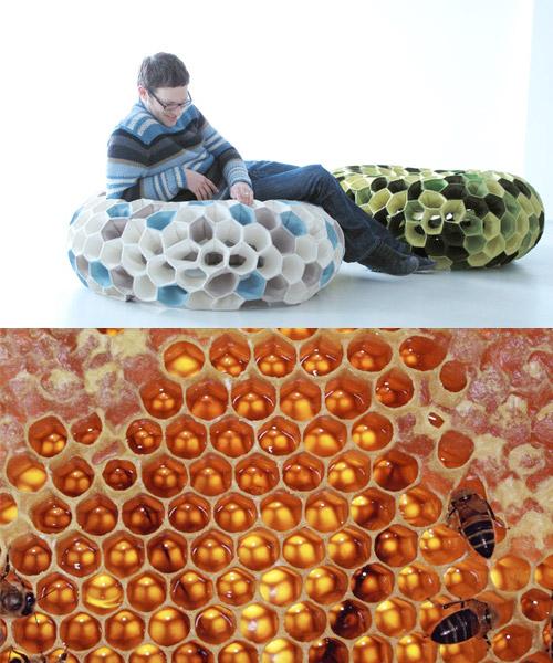 biomimicry.jpeg