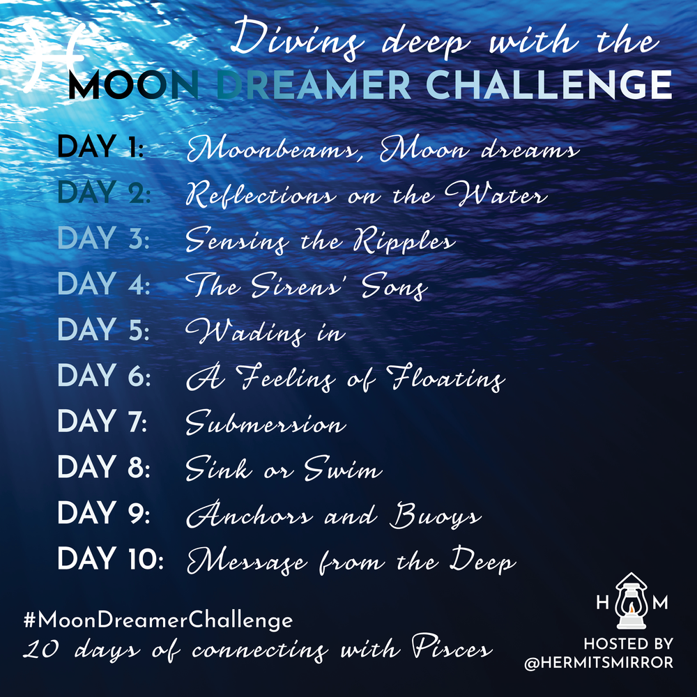 moondreamerchallenge_overview.png