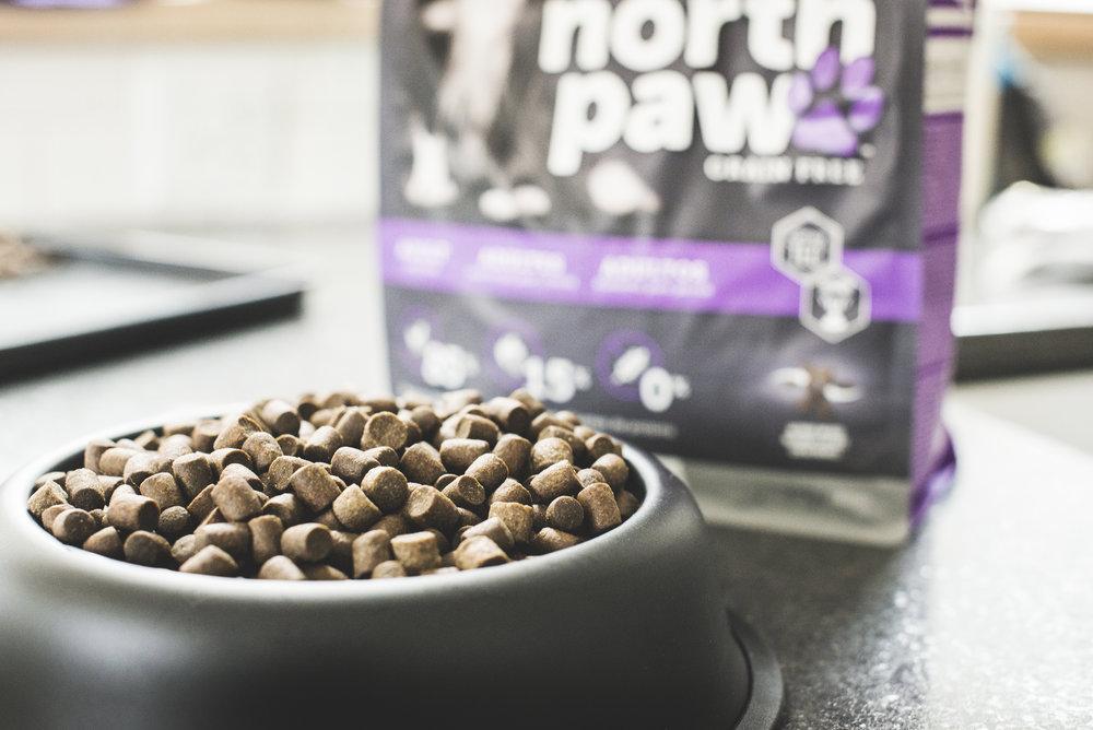 North paw adult bowl.jpg