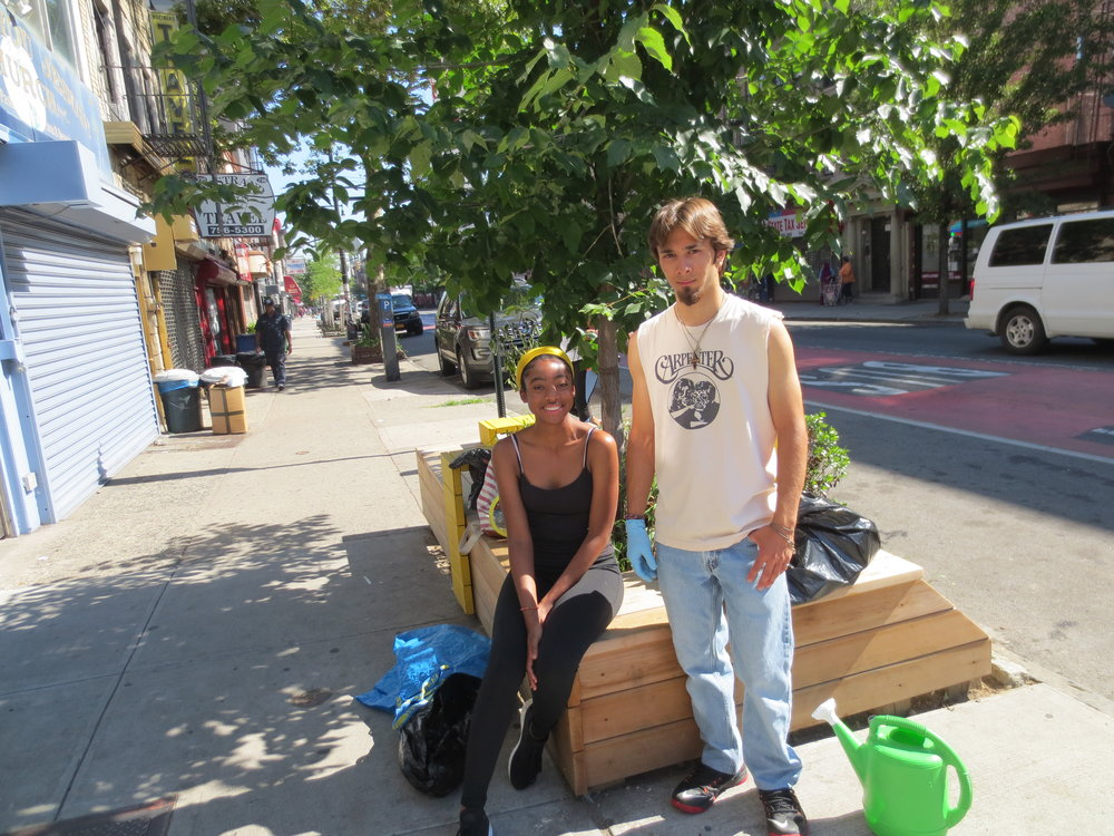 Litter Pickup - Our interns help clean up litter on Nostrand Avenue from Empire Boulevard to Park Place three times a week. They also pick up on St. Johns Place between Nostrand and New York. We now cover 12 blocks.
