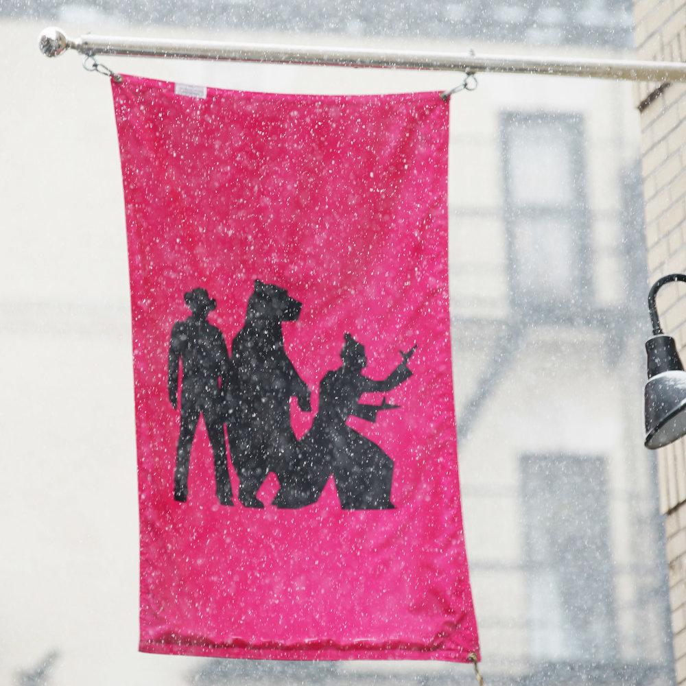 cbn snow flag.jpg