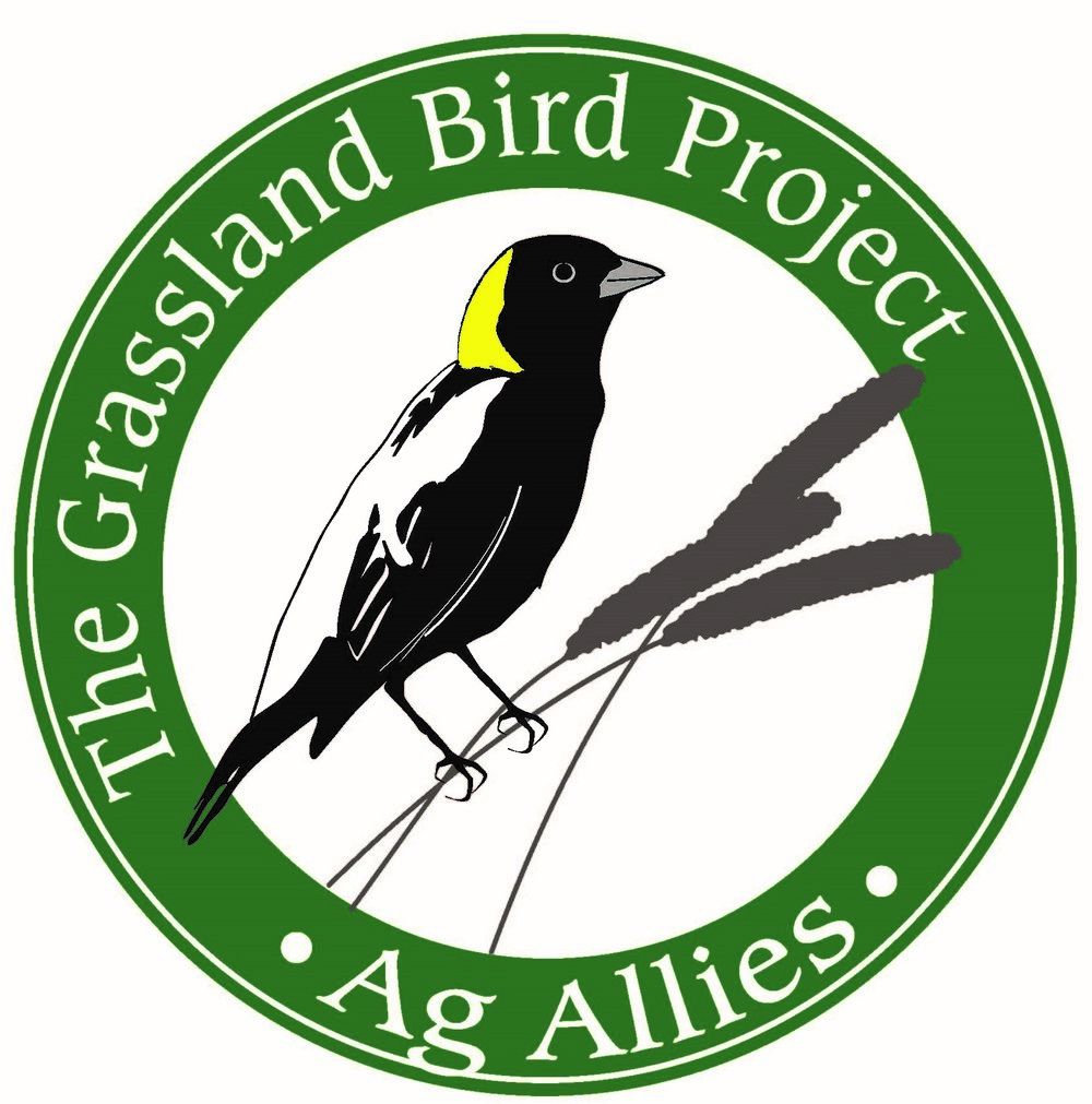 Making Room for Grassland Birds, Supporting Local Farms -