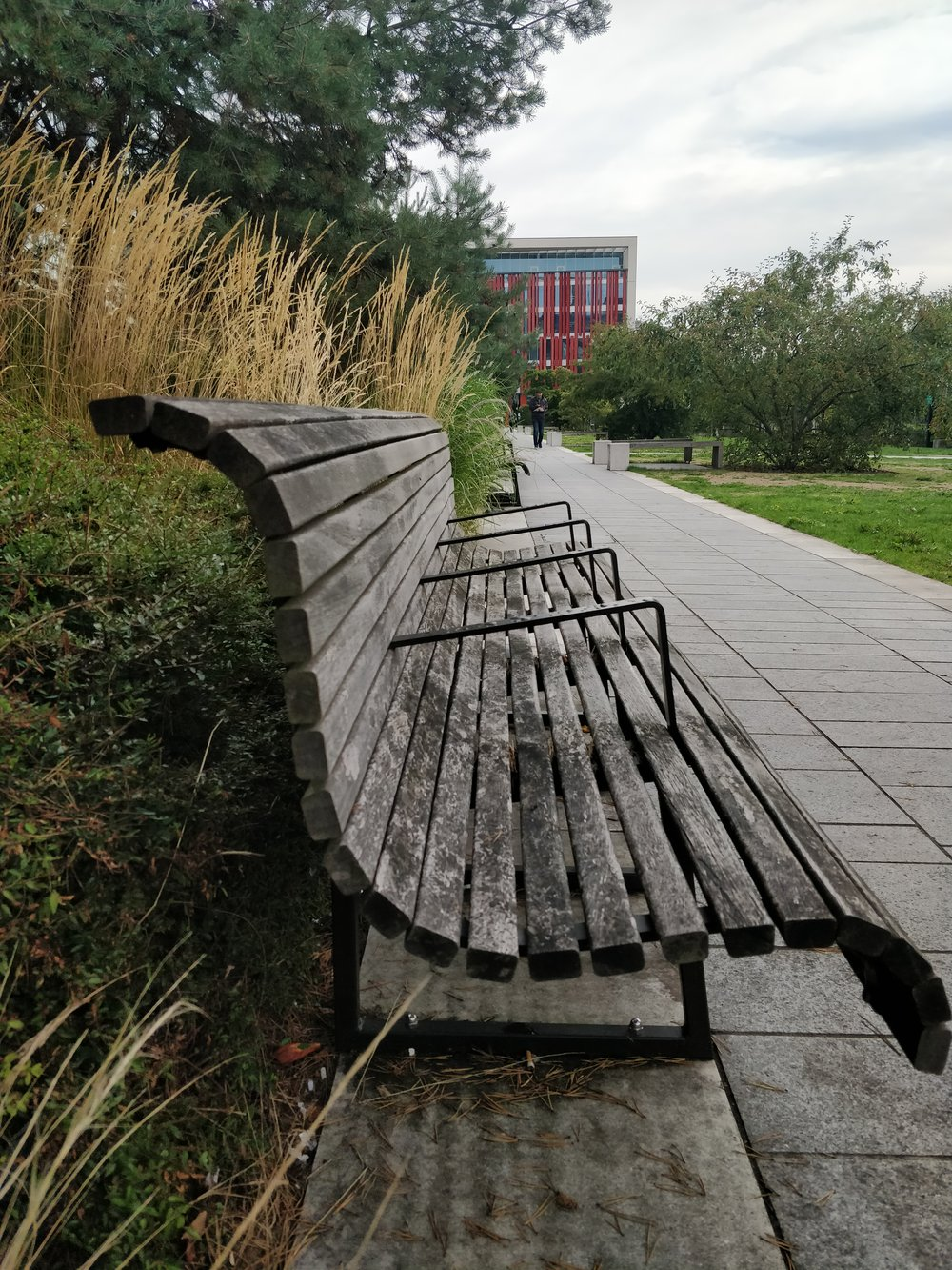 While they may appear like little armrests on the seats… - they're actually designed to stop homeless people from sleeping on them.