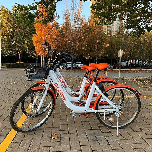 Fall colours and orange dropbikes. 🍂🚲 📷 @myglobalpictures . . . . . . . . . #cycling #biking #bikes #summer #future #tech #sea #lakes #nature #city #innovation #fitness #travel #photooftheday #transportation #meditation #health #britishcolumbia #kelowna #ubc #okanaganlifestyle #vancouver
