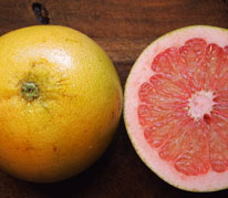 Flame Grapefruit - Flame grapefruits are reliable, heavy producers of high quality pink blushed fruit. The flesh is juicy, seedless, and delicious. The trees produce best in the hotter lowlands of Hawaii and grow into a large, spreading trees with abundant fruit.