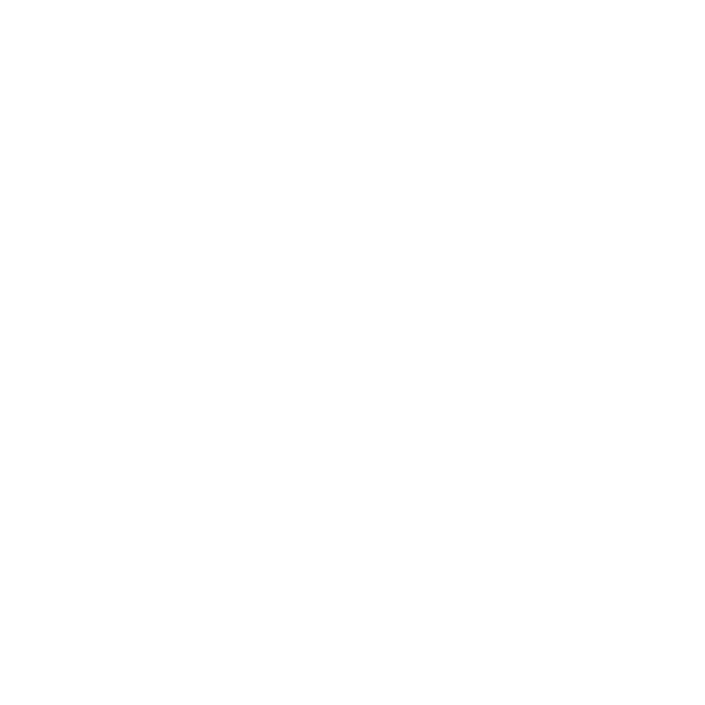 PushPull_Logo_White_on_Transparent.png