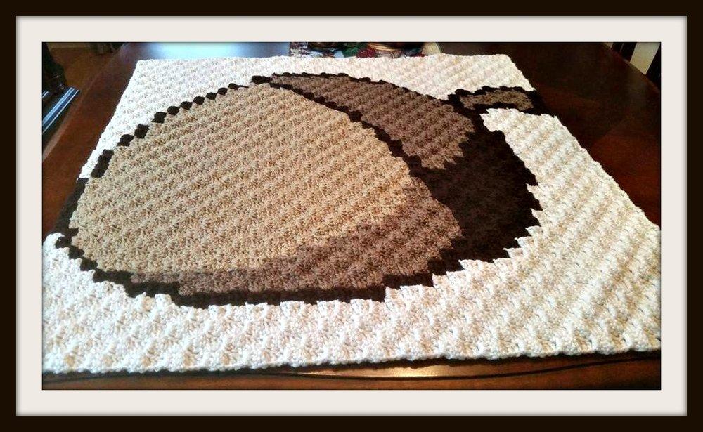 Acorn Square Small Lapghan C2c Crochet Pattern