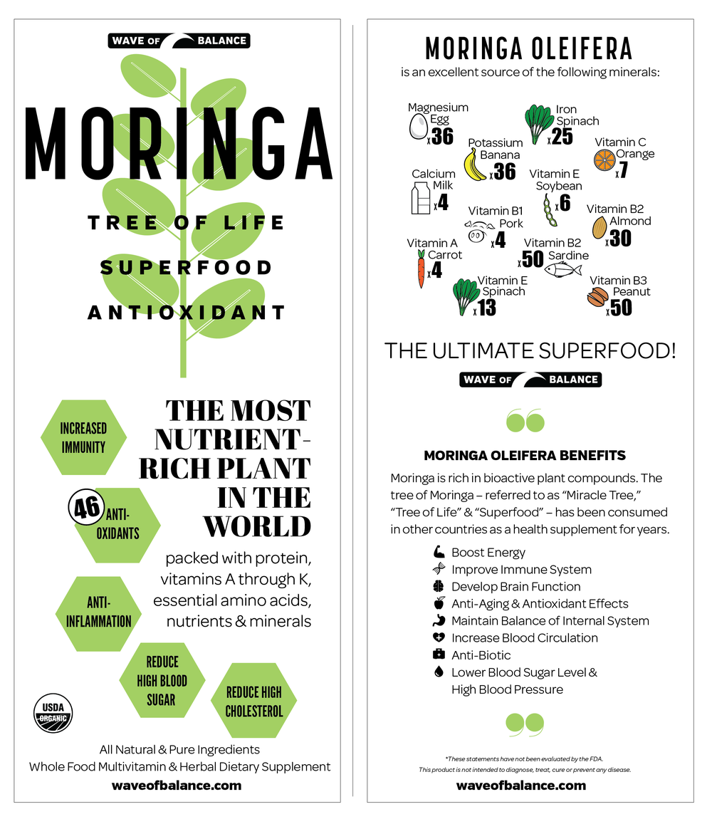 moringa-brochure-cover-web.png
