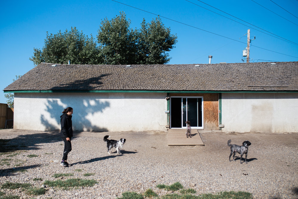BarkingGood-Facility-34.jpg