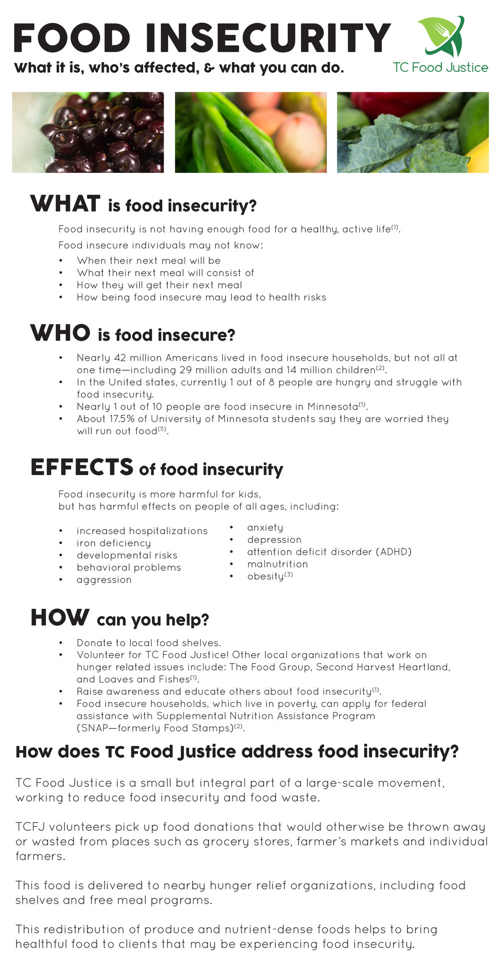 FoodInsecurity_FactSheet_for_web.jpg