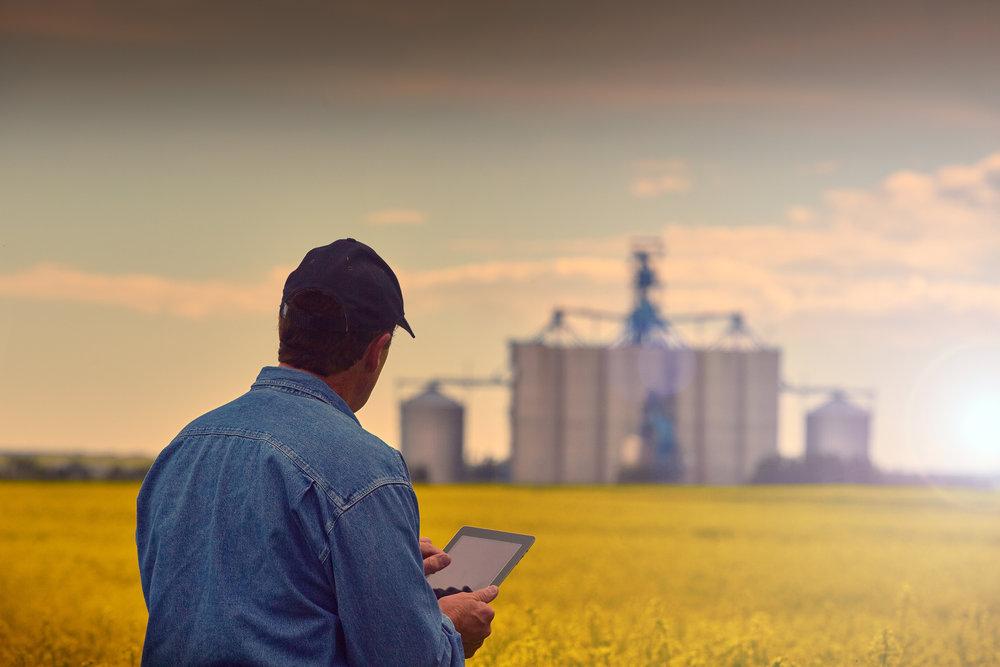 predicting_crop_yields