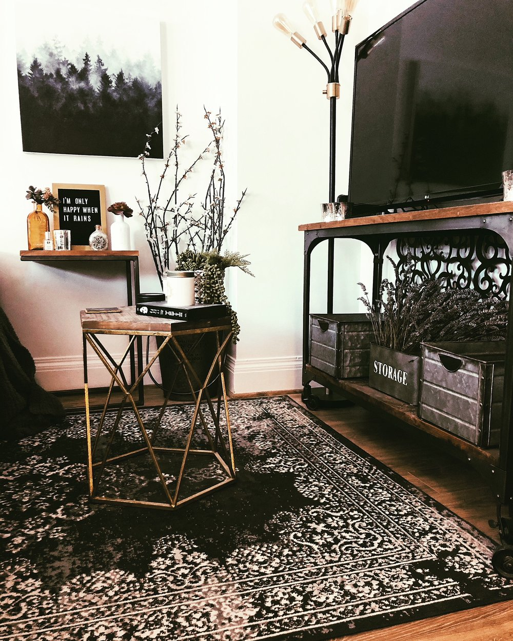 rustic-style-living-room-inspo