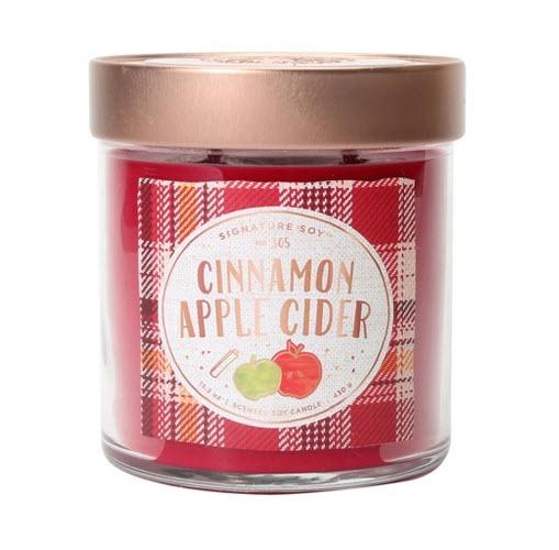15.2oz Large Lidded Jar 2-Wick Candle Cinnamon Apple Cider