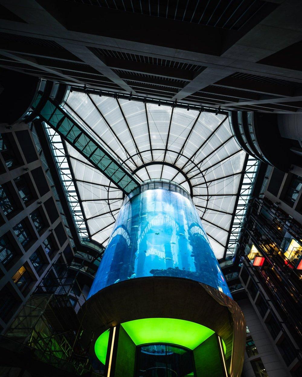 Indoor Aquarium at Radisson Blu Hotel