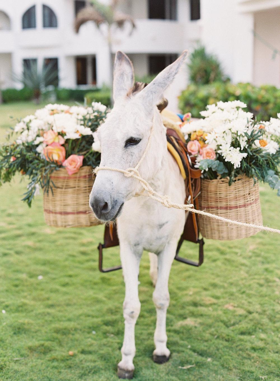 idyll-stories-mexico-wedding (25).jpg