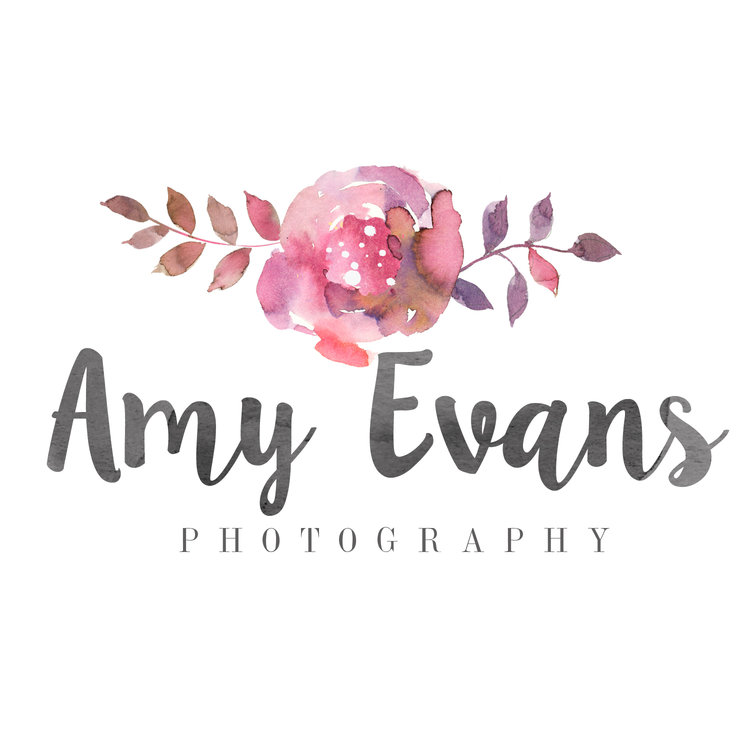 Amy Evans Photography