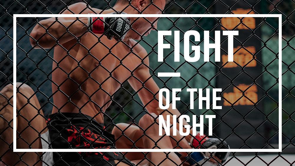 Banner04_Fight.jpg