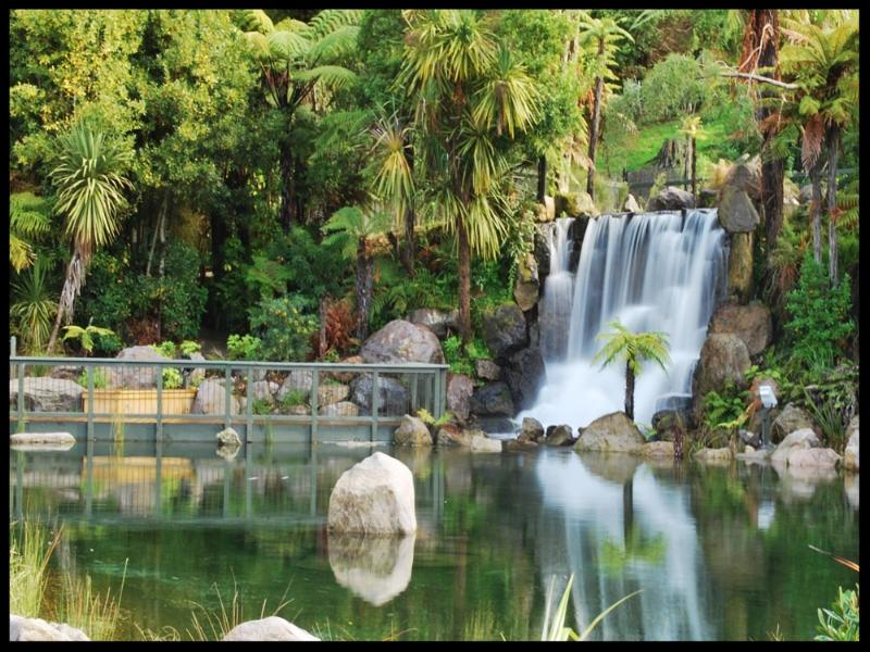 Rainbow-Springs-Rotorua.jpg