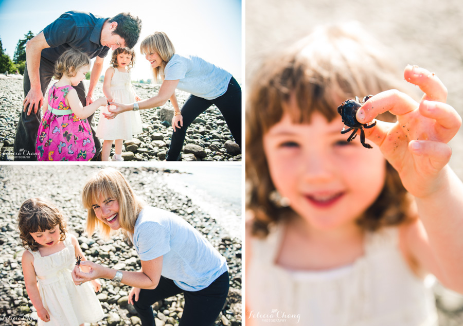 finding crabs at the beach, girl hold crab, beach family activity