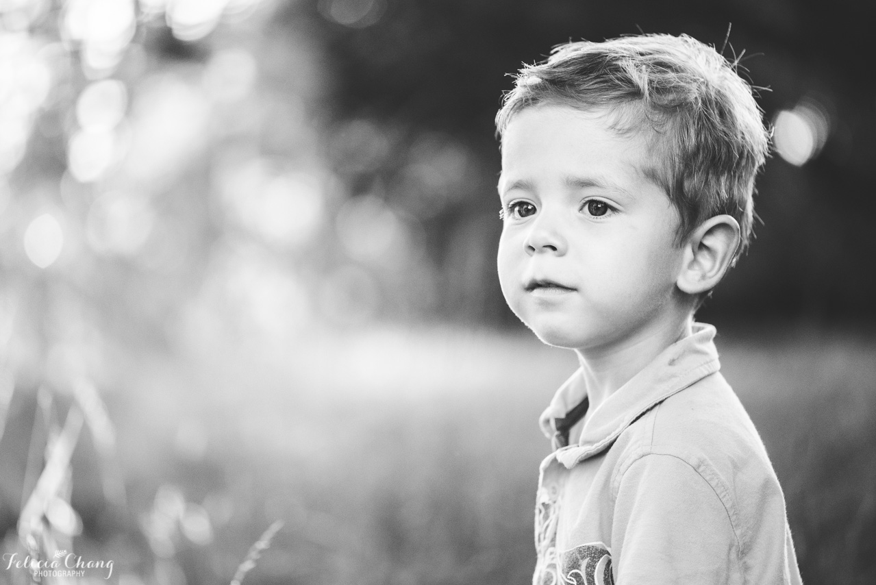 portrait of boy in the field, north vancouver family photographer, Felicia Chang Photography