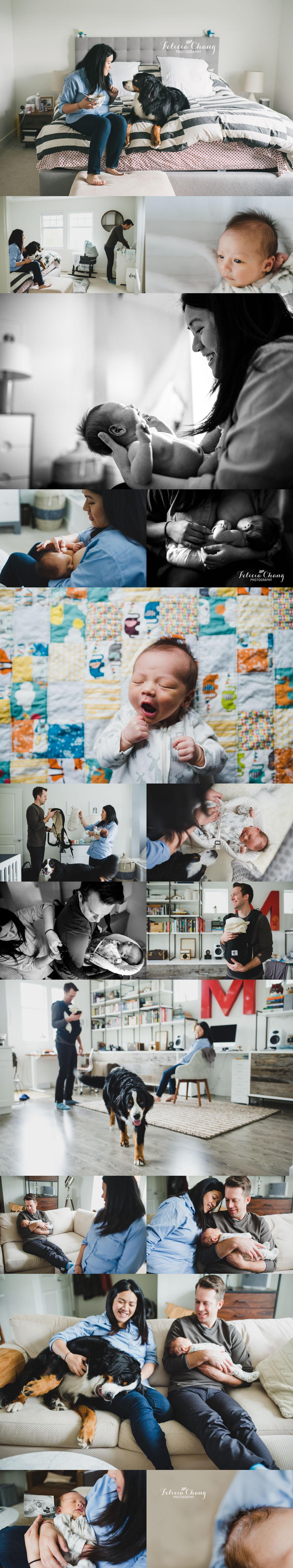 vancouver newborn photographer | Felicia Chang Photography