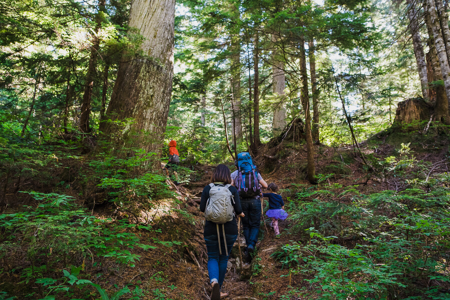 family of four hiking in cypress trails