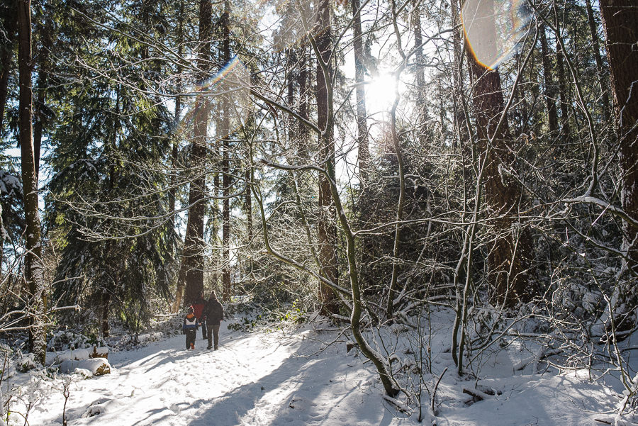 family walking in snowy forest