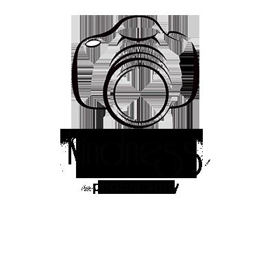 kindness photography logo