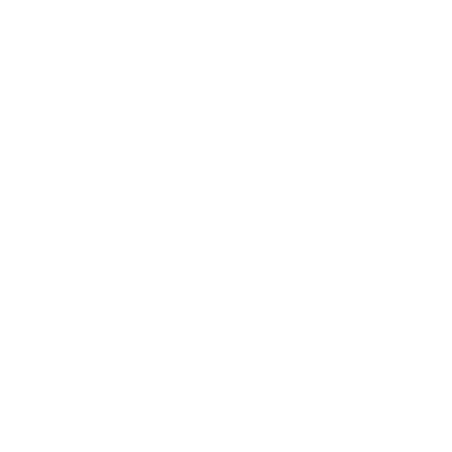 Outer Limits Brewing