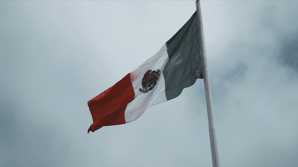 FuerzaMexico.png