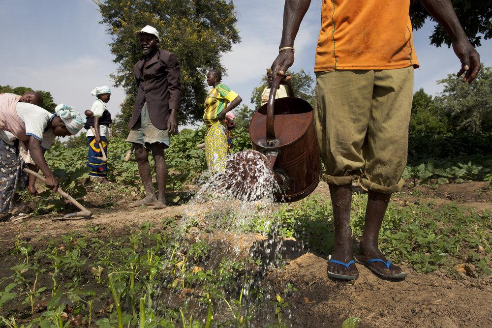 Kieryaghin village, Burkina Faso.    Source   : Dominic Chavez / World Bank via Flickr