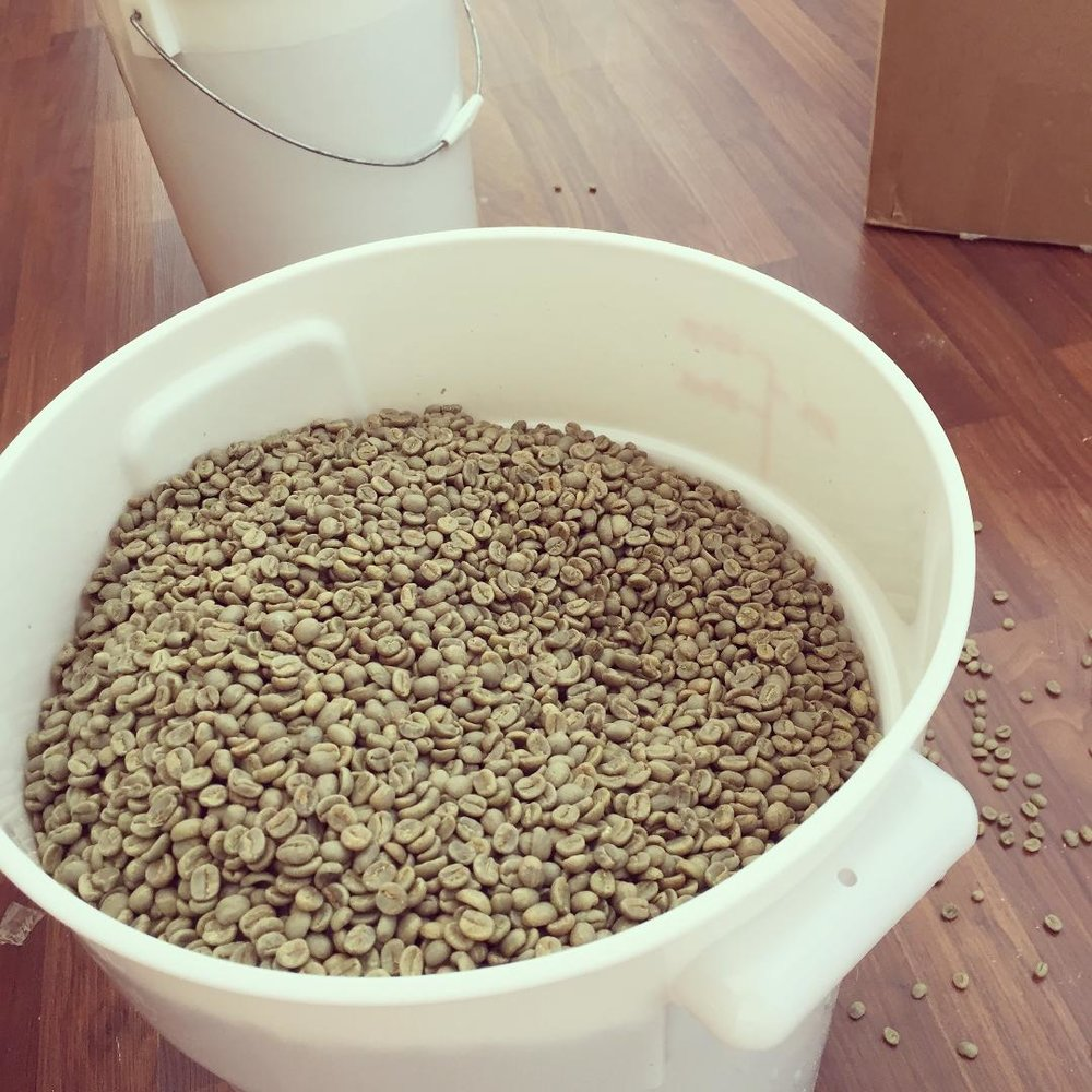 Bulk Coffee Photo.jpg