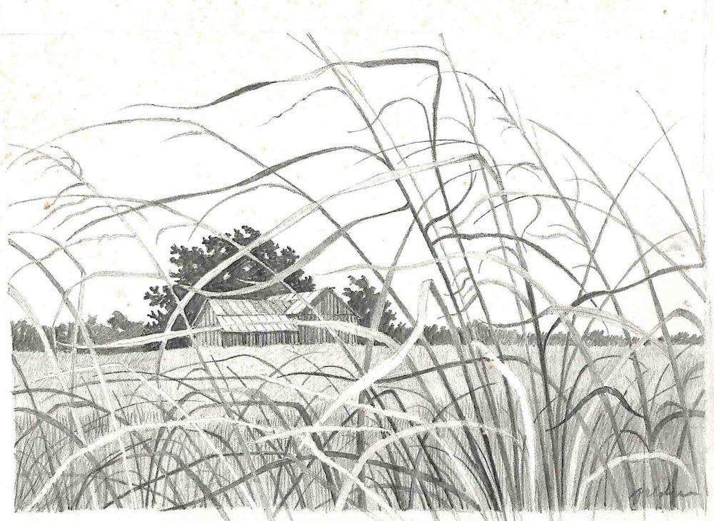 Farm Weeds