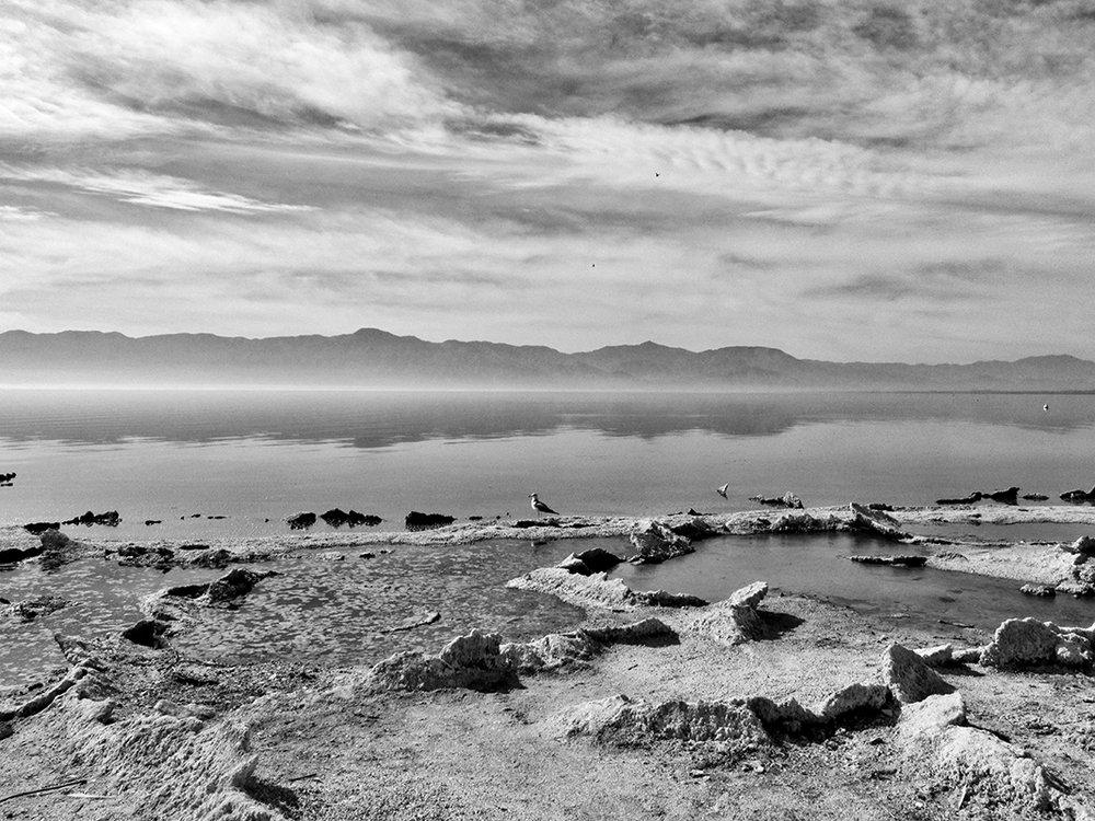 Salton Sea III - # 1/25
