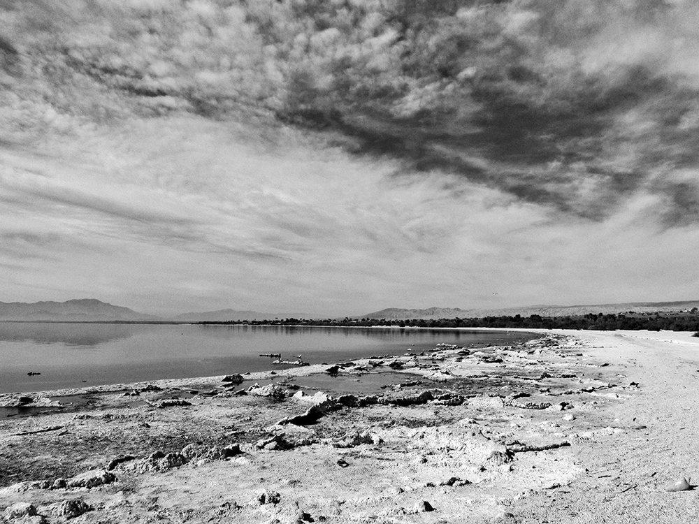 Shoreline II - # 1/25