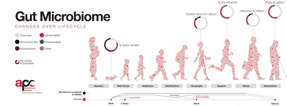 Figure from  World Microbiome Day  website.