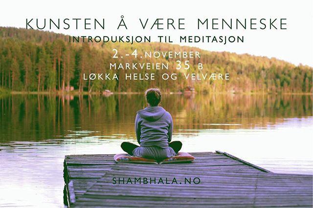 Vil du lære å meditere? 2.-4. November 2018 på Løkka Helse og Velvære ♥️velkommen! #meditation #mindfulness #shambhala #nærvær