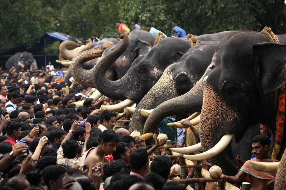 aanayottu_vadakumnathan_temple_308.jpg