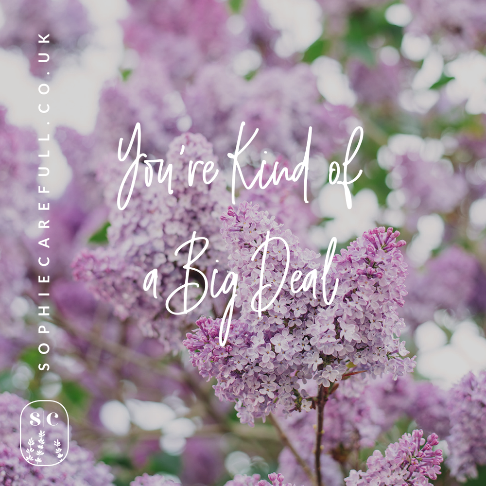 I love using my own photos for quote posts but you can use a plain square of one of your brand colours - try Canva for making these if you're not Photoshop savvy!