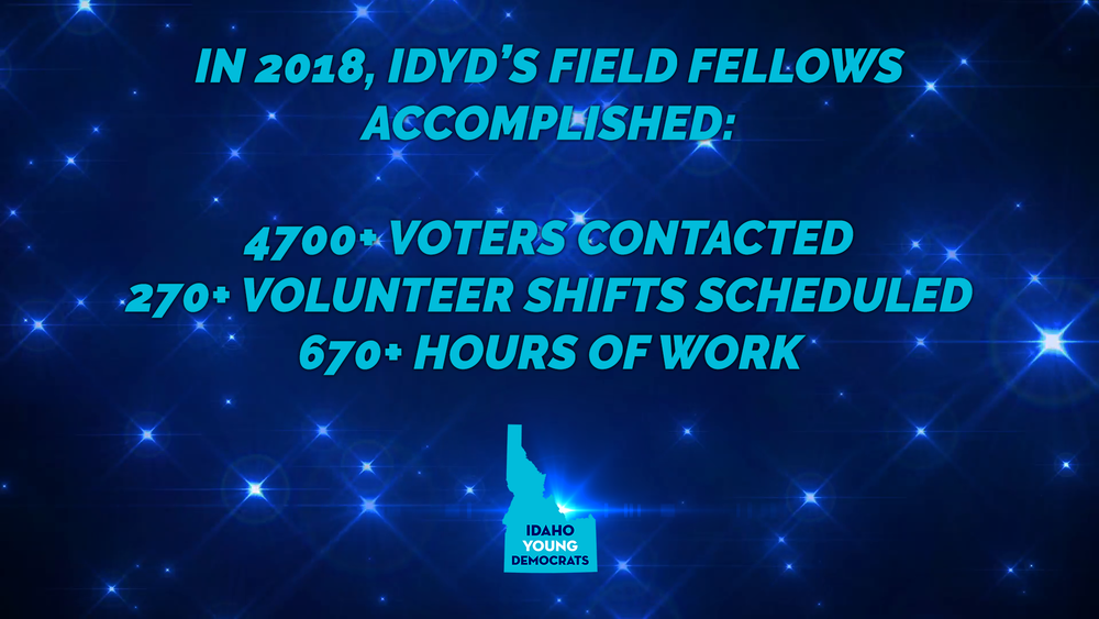 IDYD Field Fellow Stats.png